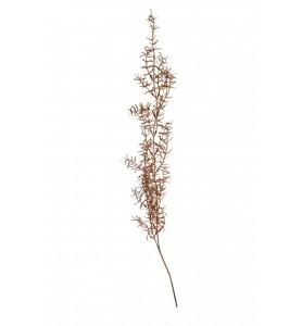 Roślina sztuczna - asparagus copper Aluro