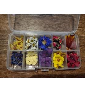 Suszone kwiaty 3d mini do żywicy