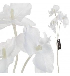 Roślina szt. - gałązka białej orchidei Aluro