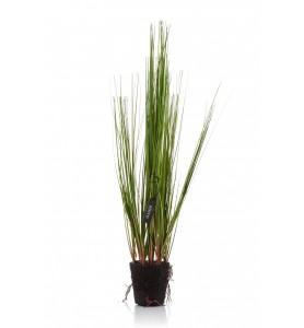 Roślina sztuczna - trawa Aluro