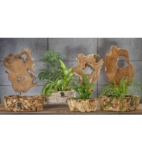 Drewno TEAK & NATUREL na stojaku Aluro